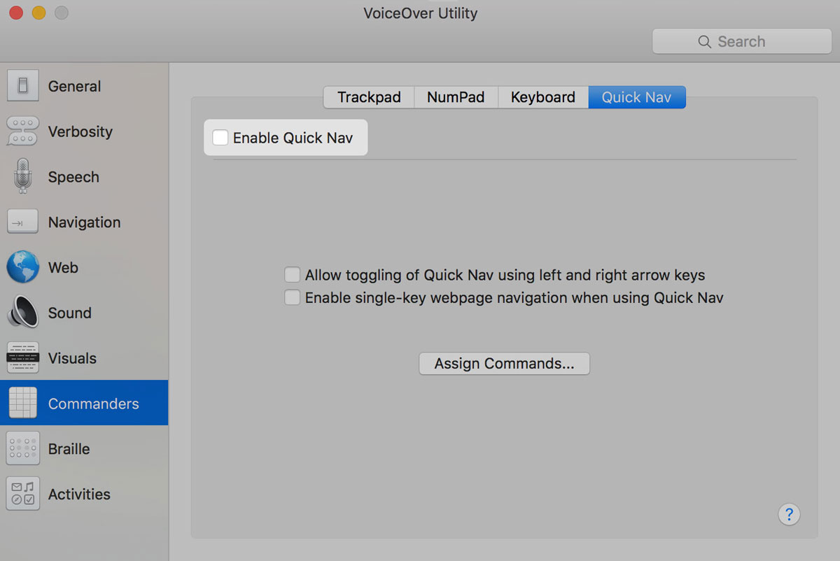 Picture of VoiceOver Quick Nav Settings